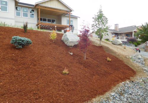 Nook Hillside Project